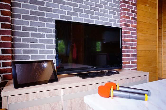 電視與影音娛樂系統